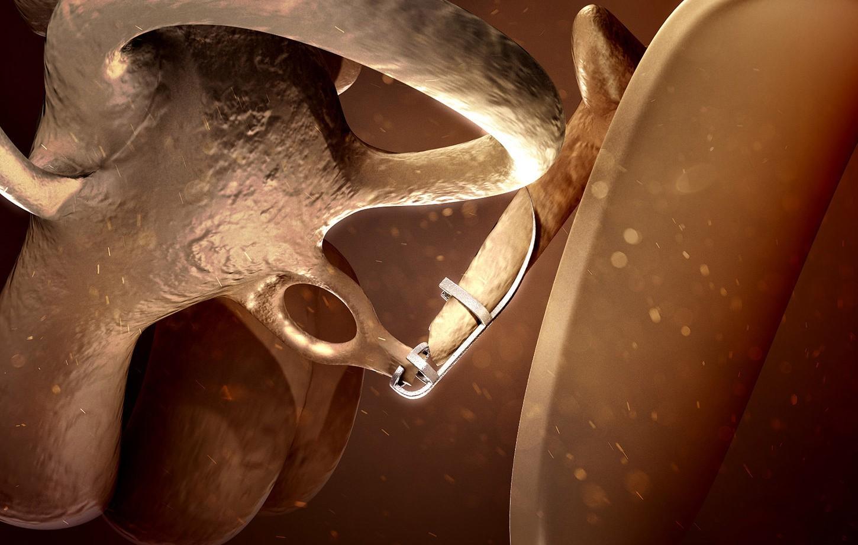 Animacja ucha wewnętrznego